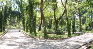 Suasana Taman Flora yang asri (Dok. Pribadi)