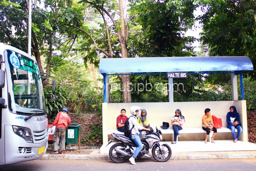 Mulai 1 Oktober 2015, areal kampus IPB Dramaga akan disterilkan dari kendaraan berbahan bakar bensin. (Foto: IchwanulAM)