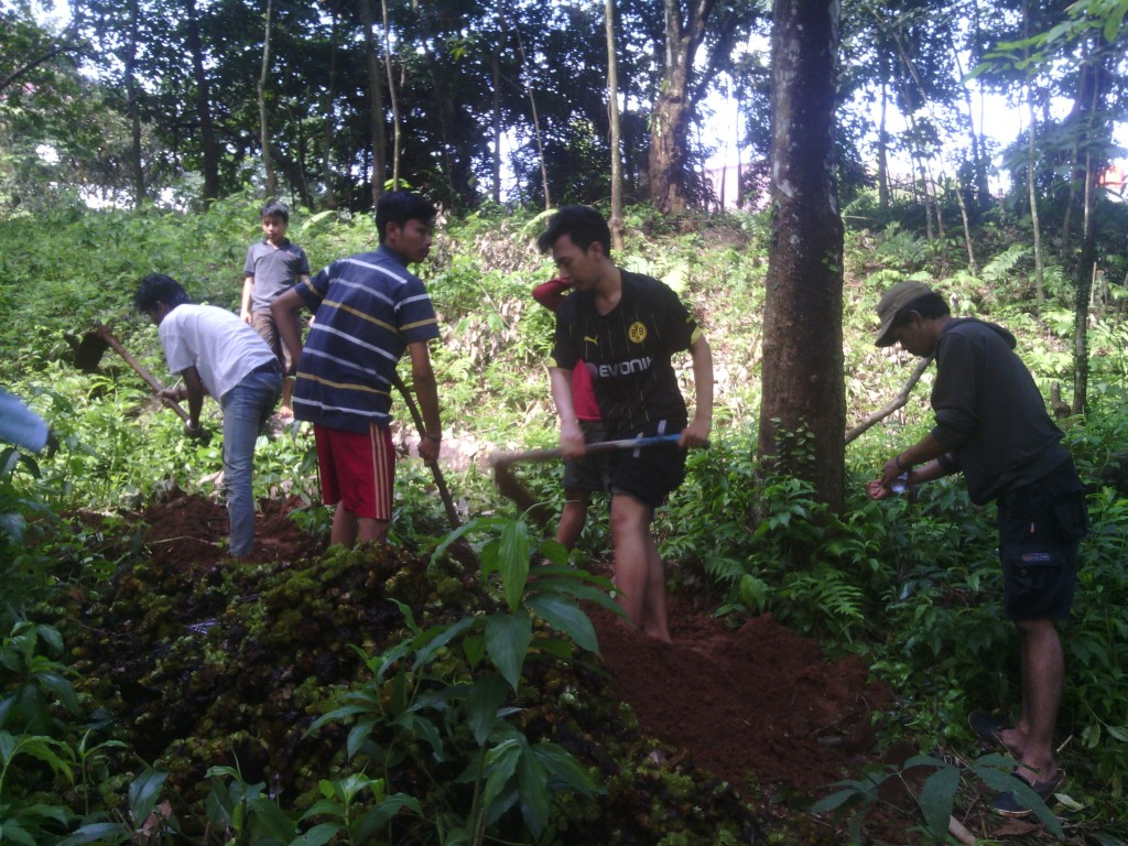 Kiambang dimanfaatkan sebagai pupuk untuk pepohonan sekitar Situ Perikanan IPB (Hanifoh)