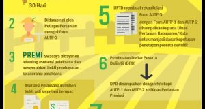 Infografis oleh : Nabilla