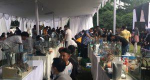 Suasana meriah Quick Setting Aquascape pada kegiatan Aquaculture Festival (Aquafest) 2017 yang dilaksanakan pada 21-22 Oktober 2017 di Lapangan Pascasarjana IPB Baranangsiang (Khairani Ayu P)